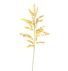 KALALOU Botanica #978
