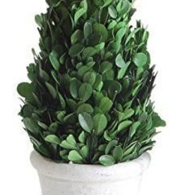 Creative Co-Op Boxwood Cone-