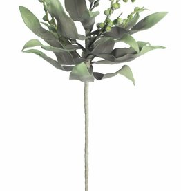 Botanica #2194 Dark Grey & Light Green Leaves With Pea Pods