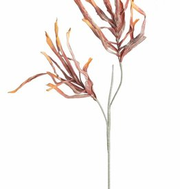 "Botanica #2171 Red & Orange ""sea weed""  Flowers"