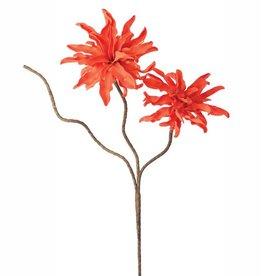 Botanica #327 Orange/Red Flowers
