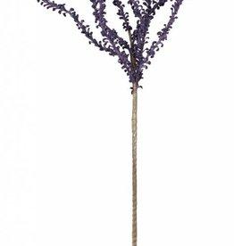 Botanica #640 Purple Sticks