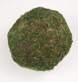 Round Moss Ball