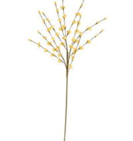 KALALOU Botanica #