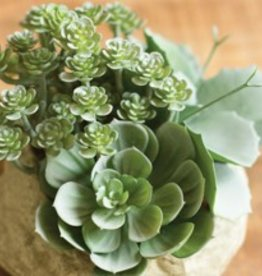 Artificial Assorted Succulent Garden in Faux Rock Pot