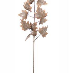Botanica #2219