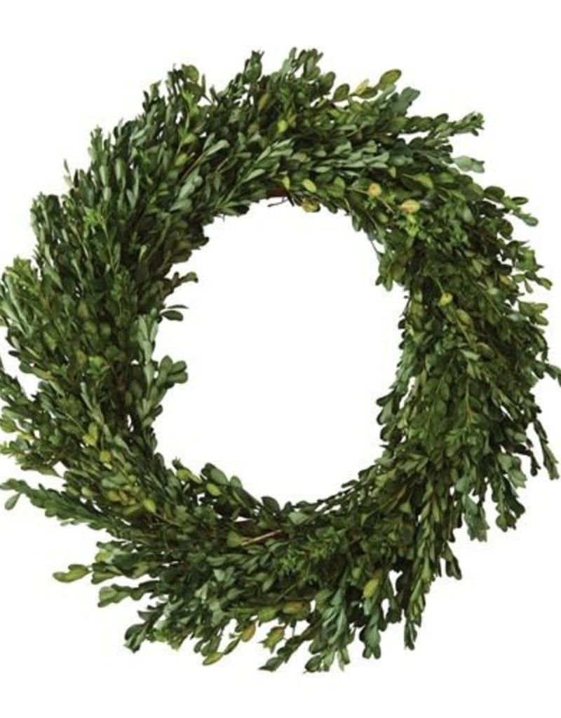 Preserved Boxwood Wreath Wow Warehouse
