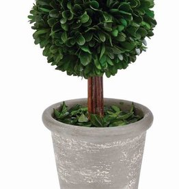 MUD PIE Boxwood Ball-
