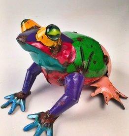 Medium Colorful Frog