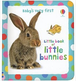 Usborne Baby's Very First Little Book of Bunnies