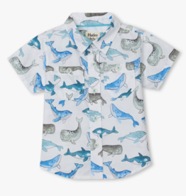 Hatley Whales Baby Button Down Shirt White