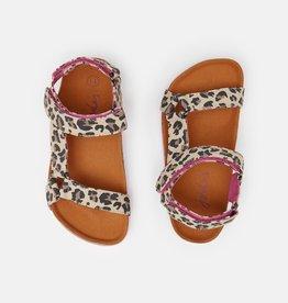 Joules Kira Shoe Leopard