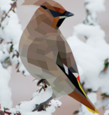 Workman Publishing Co Paint By Stickers-Birds