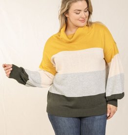 Skies are blue Color Block Turtle Neck Top