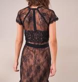 SugarLips Icona Lace Inset Dress
