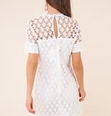 SugarLips Wistful Star Lace Dress