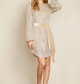 Dress Forum Velour Sequin Tunic Dress