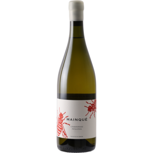 "Bodega Chacra Chacra 2019 ""Mainque"" Chardonnay, Argentina"