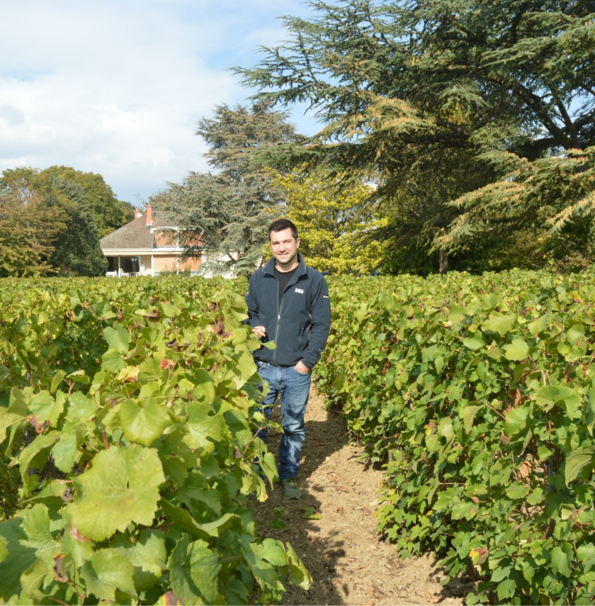 Etienne in the vineyard