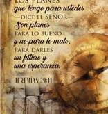 Cuadro De Madera Jeremias 29:11