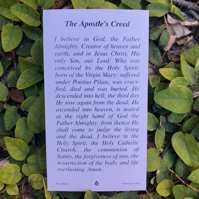 The Apostles' Creed Holy Card