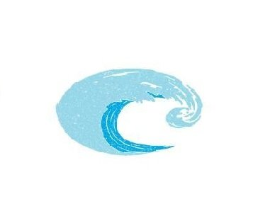Costa Del Mar Costa C Decal Large