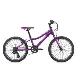 Liv 2020 Enchant 20 Lite Purple
