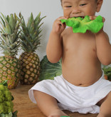 Kendall the Kale Teether