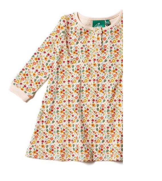 Little Green Radicals Little Green Radicals Autumn Blossom Playaway Dress