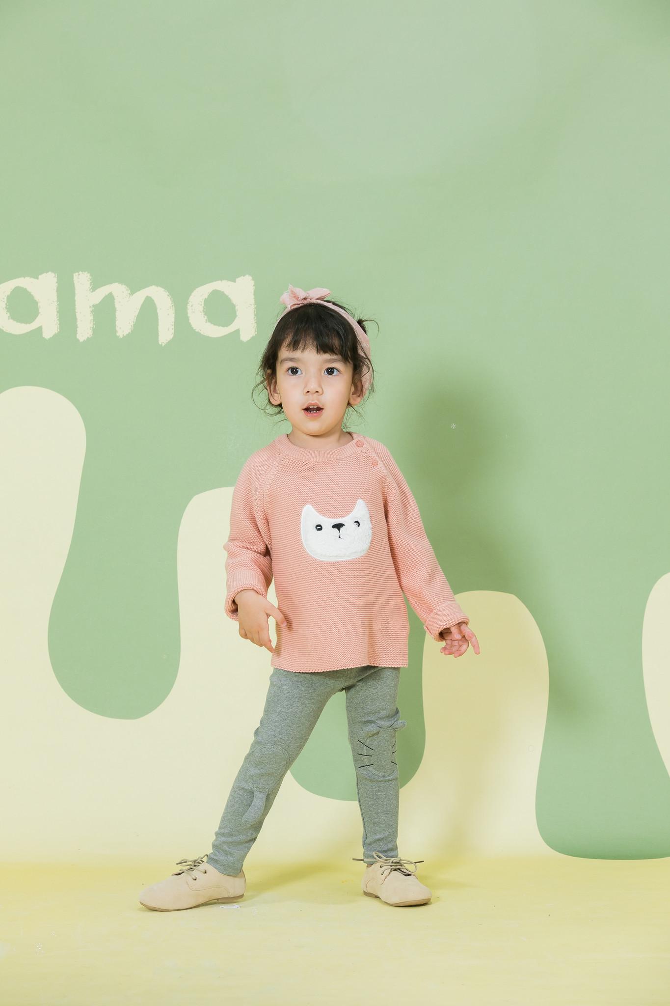 Aimama Aimama Fox Sweaters