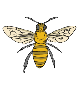 Tattly Tattly Honey Bee