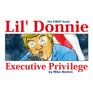 Image Comics Lil Donnie Hc Vol 01 Executive Privilege