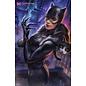 DC Comics Catwoman #21 Ian Macdonald Variant Ed