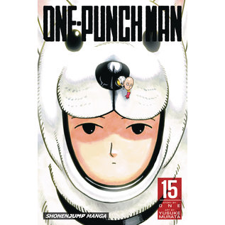 ONE PUNCH MAN GN VOL 15 (C: 1-0-1)