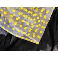 Collegiate Colors Rain Poncho