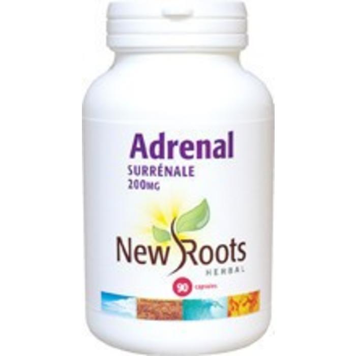 Adrenal pour les glandes surrenales