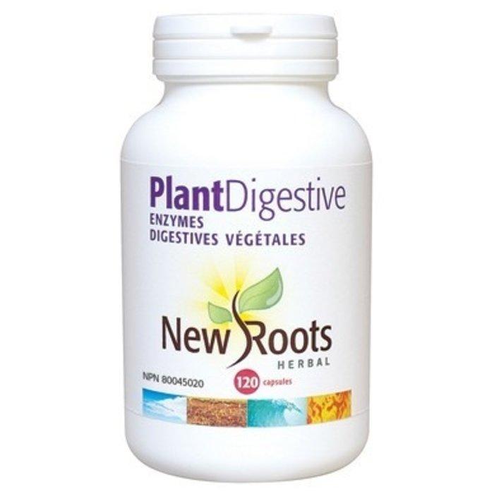 Enzymes digestives végétales 375mg 120 caps