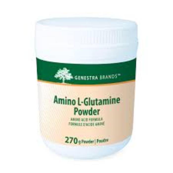 Amino L-Glutamine poudre 270g