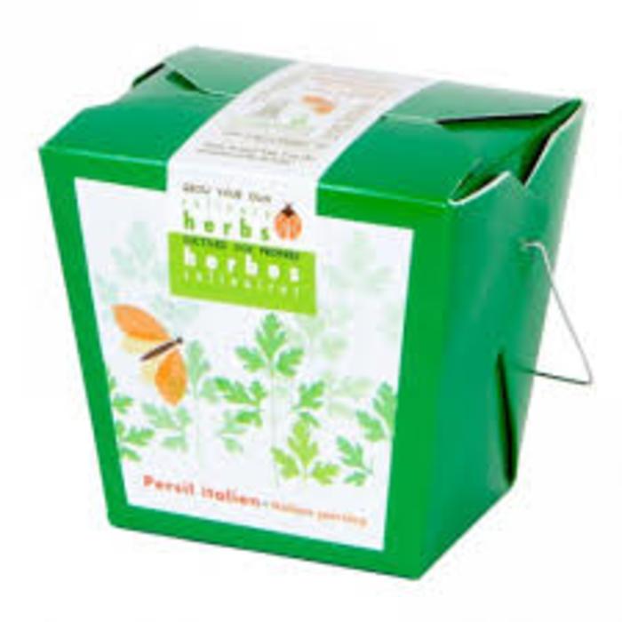 "Pot 4"" Herbes culinaires - Persil italien"