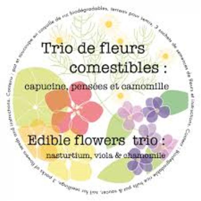"""Pot 7"""" trio biologique - fleurs comestibles"""
