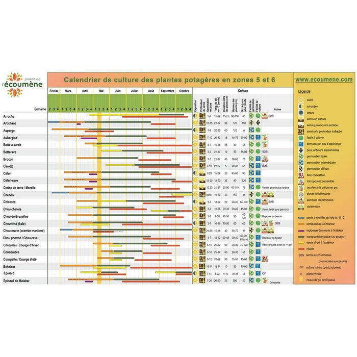 Calendrier semis zones 5 et 6