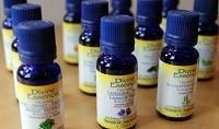 La puissance des huiles essentielles dans votre maison