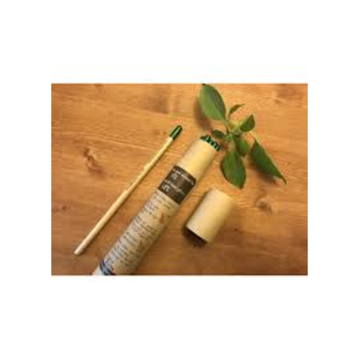 Crayon avec semences (8)