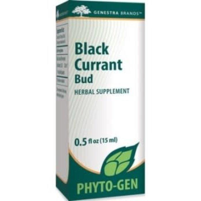 Black Currant Bud 15 ml (Ribes nigrum)