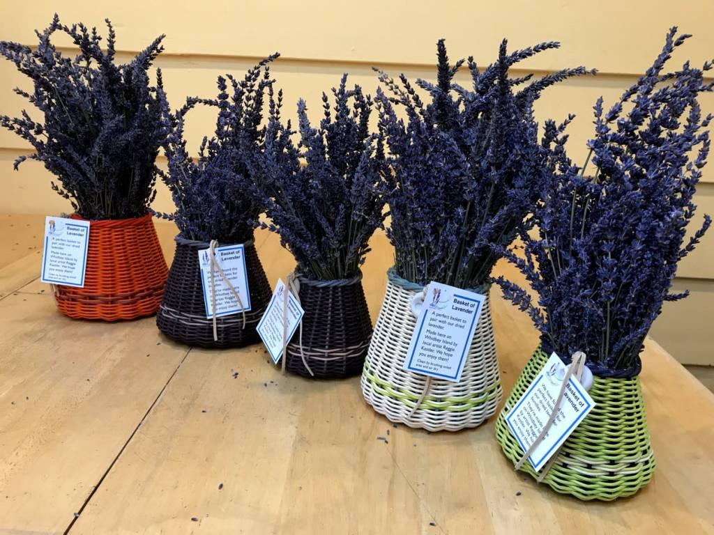 Lavender Wind Basket of Lavender, Small