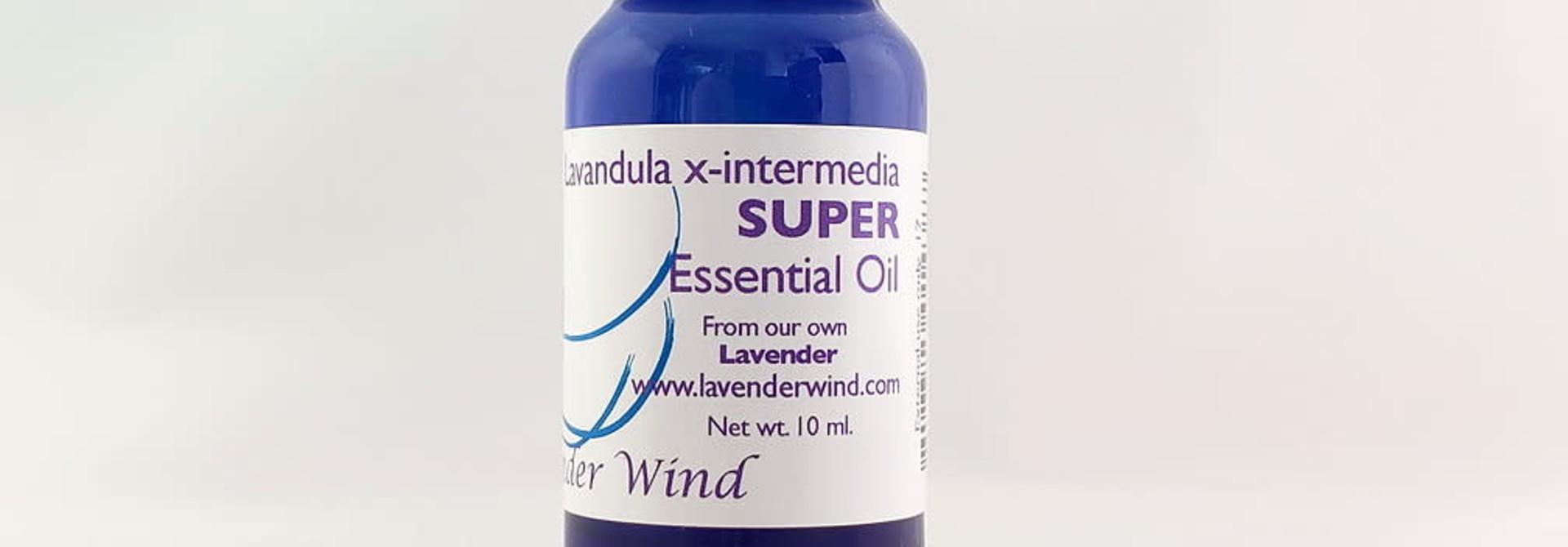 """Lavender """"Super"""" Essential Oil"""