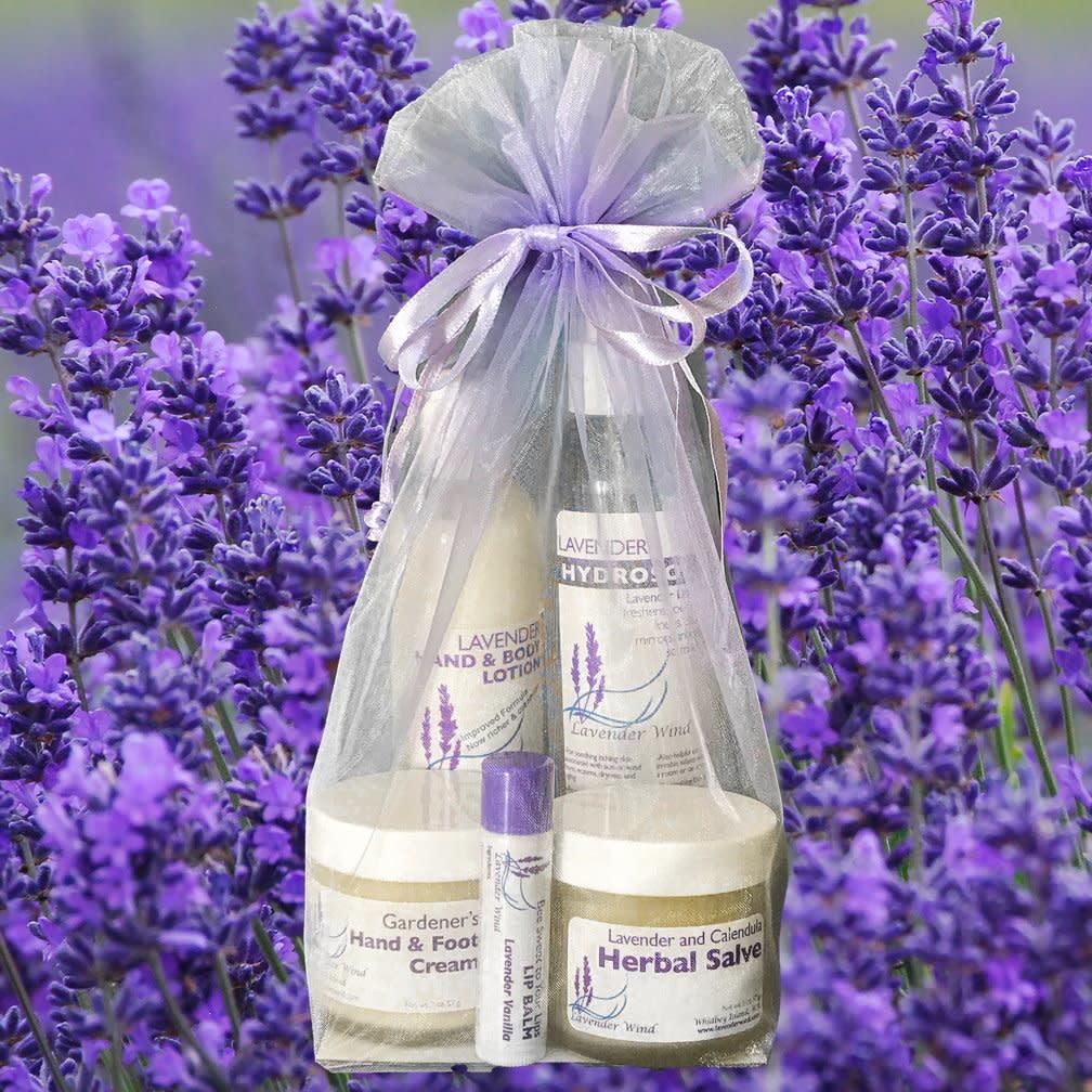 Gift Bag:  Skin Rejuvenation Kit-1