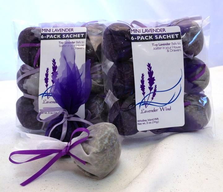 Mini Lavender 6-Pack-1