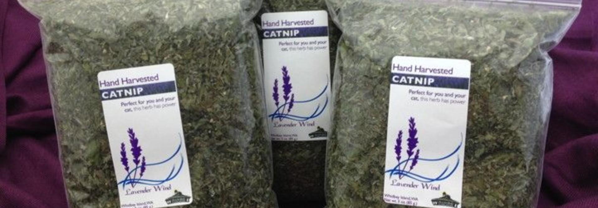 Catnip Dried - 2 oz.