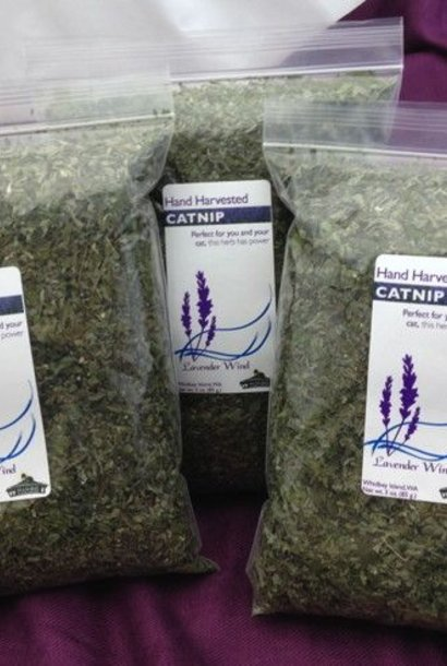 Catnip Dried - 2 oz.